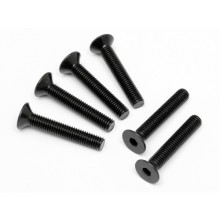 FLAT HEAD SCREW M5x30mm (HEX SOCKET/6pcs)