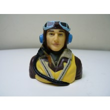 1/6 WWII British pilot Fully Painted
