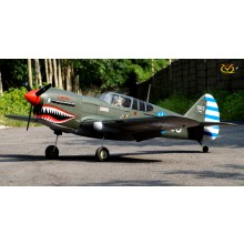 VQ Models - Curtiss P-40 (60-90 size - warbird category)